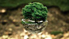 Useful Eco gestures in the framework of Erasmus +