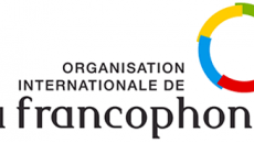 The Francophonie youth consultation platform – FIO